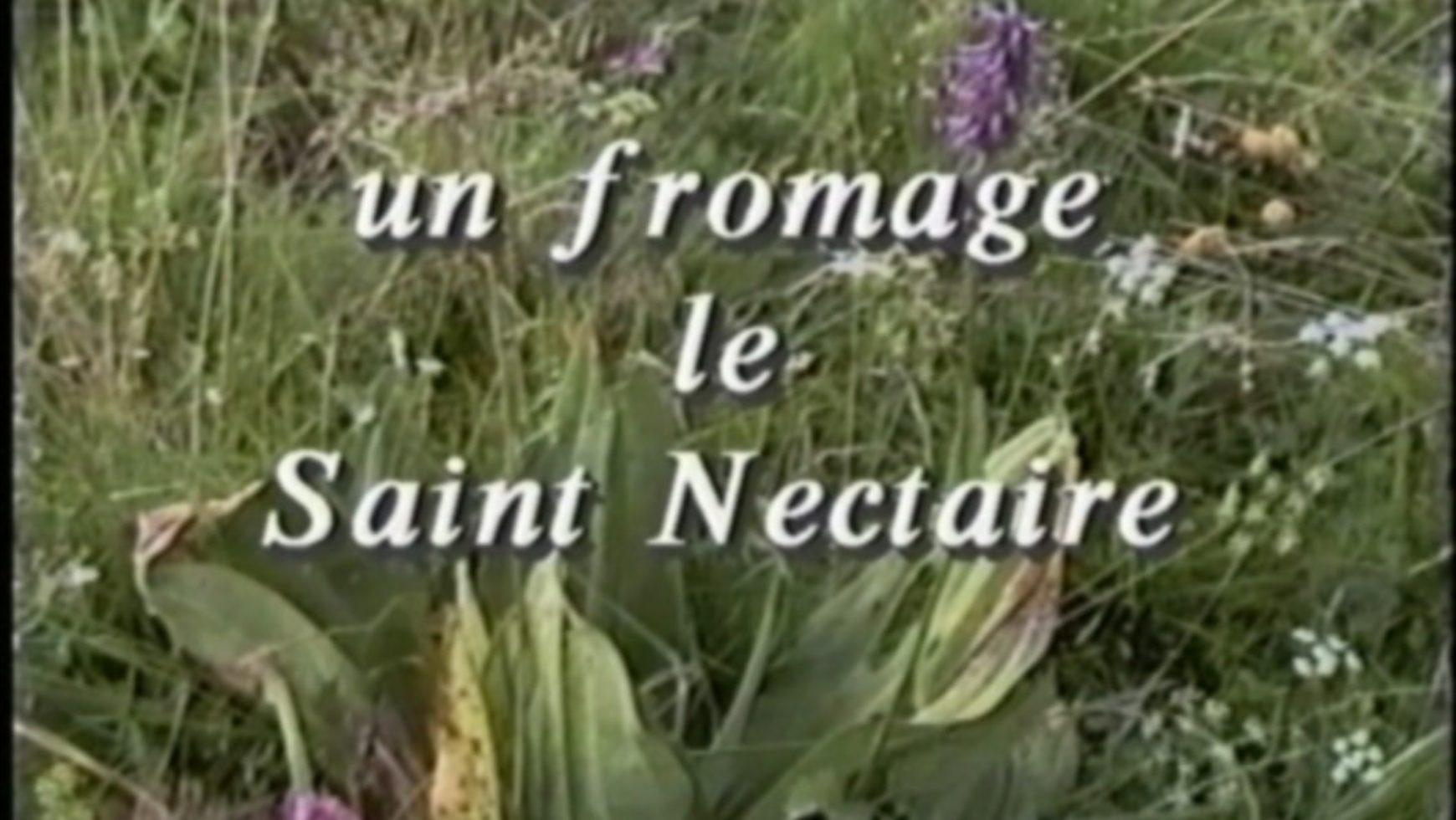 Un Fromage – Le Saint Nectaire