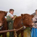 Le Comice agricole d'Allanche 2018 - v8