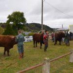 Le Comice agricole d'Allanche 2018 - v3