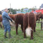 LAVA_YvesAufauvre_comice-agricole-Allanche-2019_01