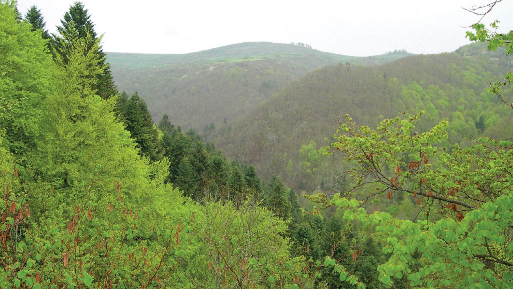Les anciennes mines des gorges de la Sianne